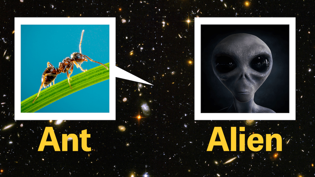 Ant vs. Alien